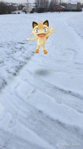 Pokémon Kitty in the snow